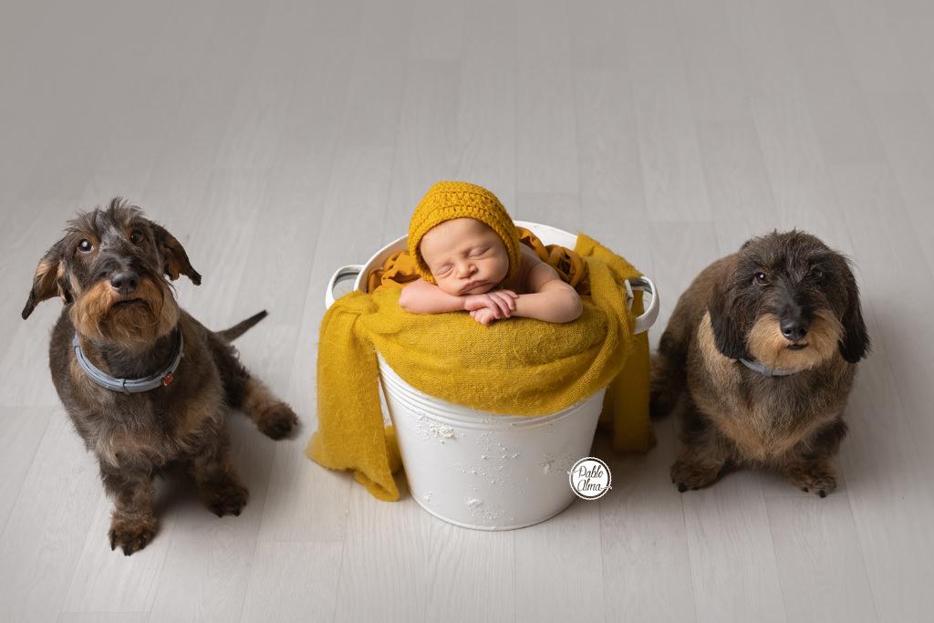 Fotos de Recién Nacido para niños
